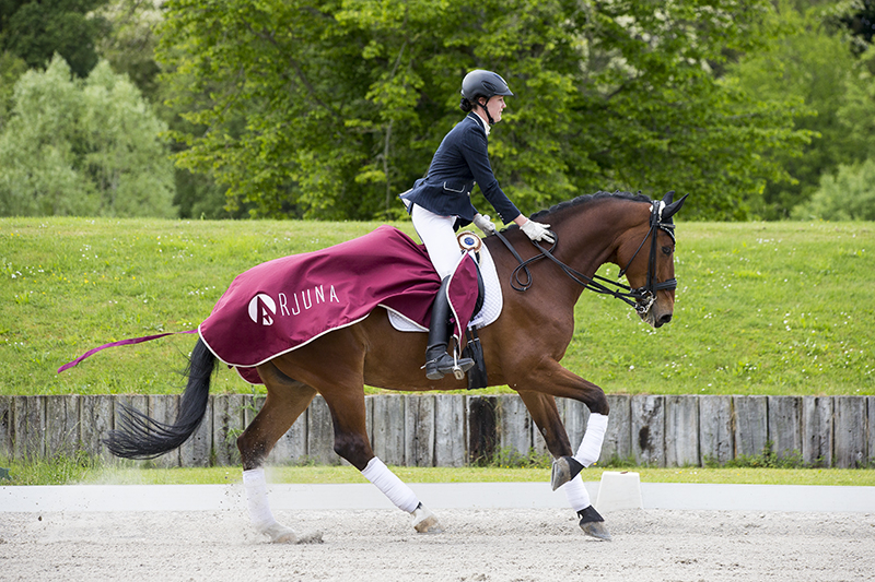 Pro Elite Pamfou Dressage 2015© DigiShots